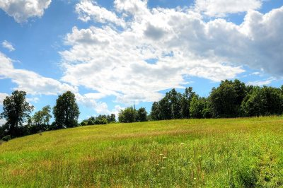 Rhinebeck Residential Lots & Land For Sale: Hilee Road