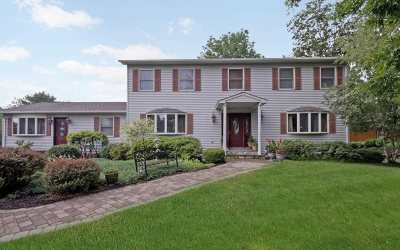 East Fishkill Single Family Home For Sale: 274 Judith Dr.