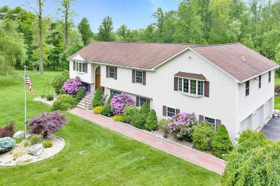 East Fishkill Single Family Home For Sale: 193 Sylvan Lake Rd