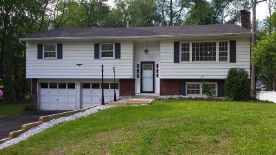 Hyde Park Single Family Home For Sale: 6 Robert Dr