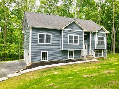New Paltz Single Family Home For Sale: 159 North Putt Corners R
