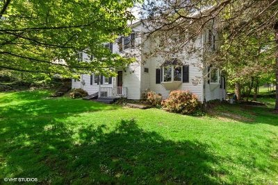 Pleasant Valley Single Family Home For Sale: 1839 Route 44