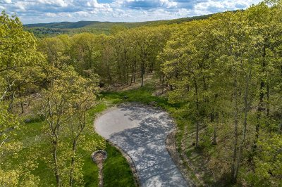 Pawling Single Family Home For Sale: 2 Debby Ln