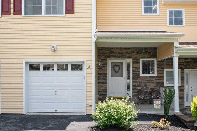 Dutchess County Condo/Townhouse For Sale: 37 Aveonis Ct