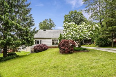 Pawling Single Family Home For Sale: 38 Prospect St