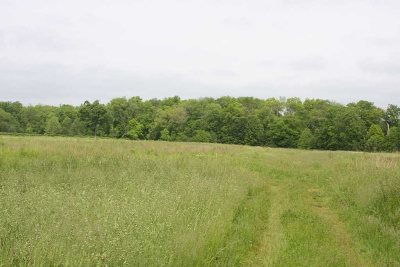 Residential Lots & Land For Sale: Robinson Lane