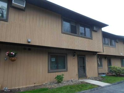 Beekman Condo/Townhouse For Sale: 3402 Chelsea Cove S