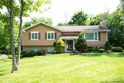 Plattekill Single Family Home For Sale: 688 State Route 44 55