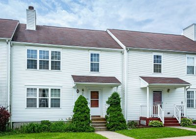 Pawling Condo/Townhouse For Sale: 103 Mohawk Trl