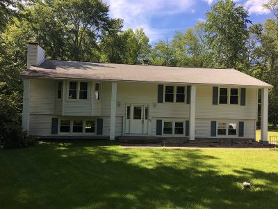 Dutchess County Single Family Home For Sale: 45 Whiteford Dr