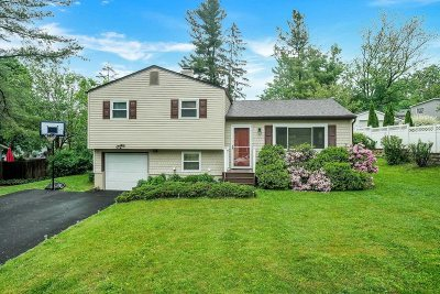 Fishkill Single Family Home For Sale: 96 Longview Dr