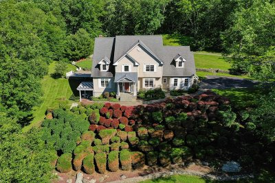 Pawling Single Family Home For Sale: 185 Holmes Rd