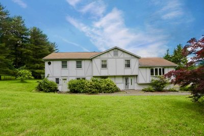 Fishkill Single Family Home For Sale: 12 Kathy Ct