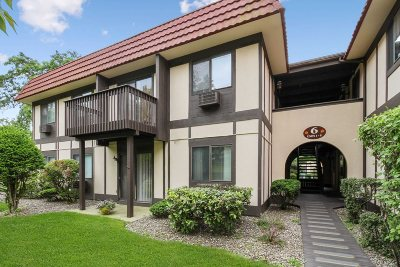 Dutchess County Condo/Townhouse For Sale: 6 Loudon Dr #7
