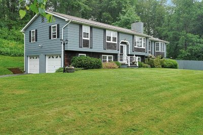 Dutchess County Single Family Home For Sale: 181 Emans Rd