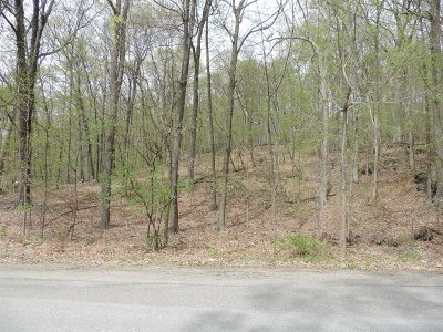 East Fishkill Residential Lots & Land For Sale: 31 Route 376