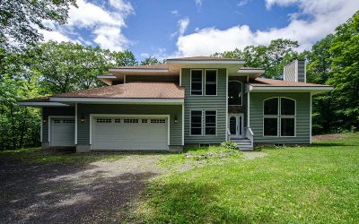 Dutchess County Single Family Home For Sale: 915 Pumpkin Ln