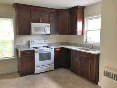 Dutchess County Rental For Rent: 11 Washington Avenue #4