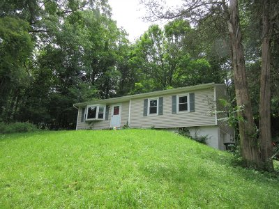 Dutchess County Single Family Home For Sale: 109 Lakeside Dr