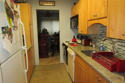 Dutchess County Condo/Townhouse For Sale: Sterling #115