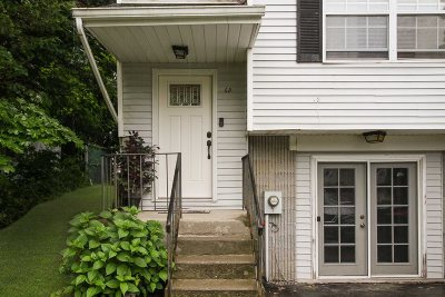 Hyde Park Condo/Townhouse For Sale: 68 Windmill Rd