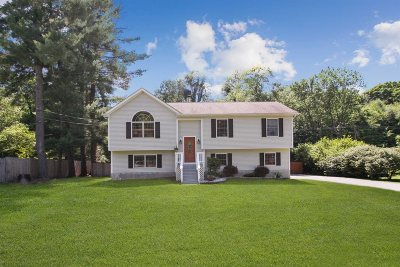 Dutchess County Single Family Home For Sale: 14 Exeter Rd
