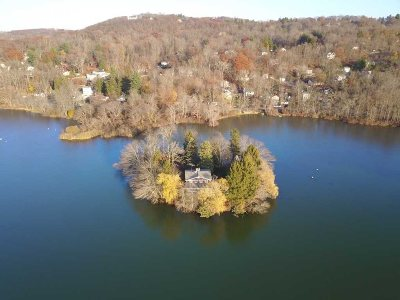 Patterson Single Family Home For Sale: 1 Willow Island