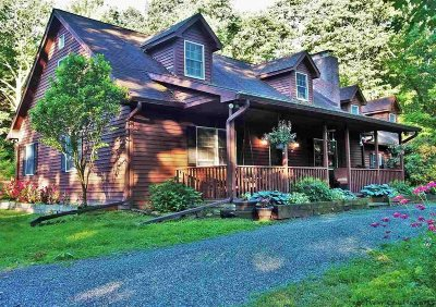 Saugerties Single Family Home For Sale: 491 Wilhelm Road