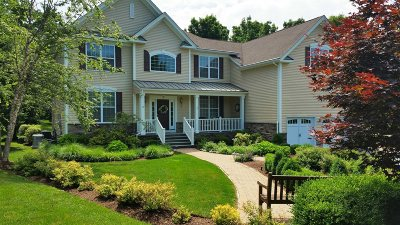 East Fishkill Single Family Home For Sale: 4 Walnut Rd