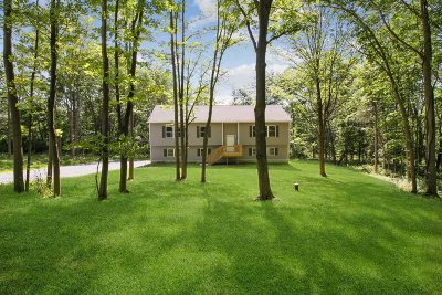 Dutchess County Single Family Home For Sale: 18 Organ Hill Rd