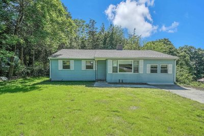 Dutchess County Single Family Home For Sale: 20 Robert Rd