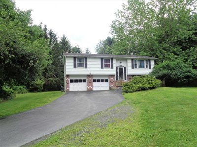 Dutchess County Single Family Home For Sale: 36 Wendy Drive