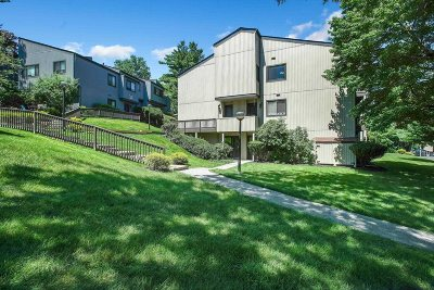 Poughkeepsie City Condo/Townhouse For Sale: 3203 Clubhouse Ct