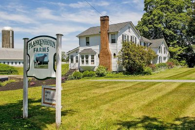 Columbia County, Dutchess County, Orange County, Putnam County, Ulster County, Westchester County Single Family Home For Sale: 353 Gretna Road