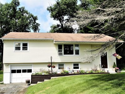 Amenia Single Family Home For Sale: 11 Broadway