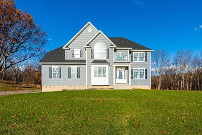 Dutchess County Single Family Home For Sale: 46 Delfina Dr