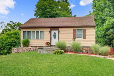 Fishkill Single Family Home For Sale: 225 Carol Ln