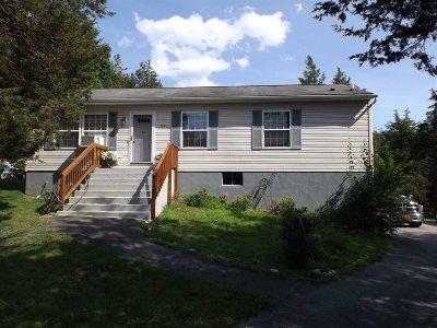 Beekman Single Family Home For Sale: 54 Bronson