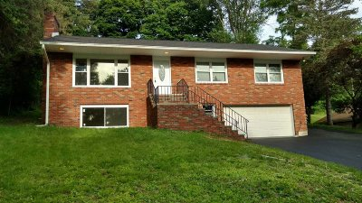 Dutchess County Single Family Home For Sale: 24 Longview Ave