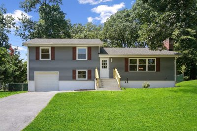 Poughkeepsie Twp Single Family Home For Sale: 125 Ray Blvd
