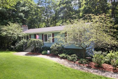 East Fishkill Single Family Home For Sale: 11 Back Ct