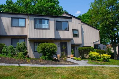 Poughkeepsie City Condo/Townhouse For Sale: 1810 Holly Walk Walk