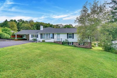 Dutchess County Single Family Home For Sale: 81 Hornbeck Rd