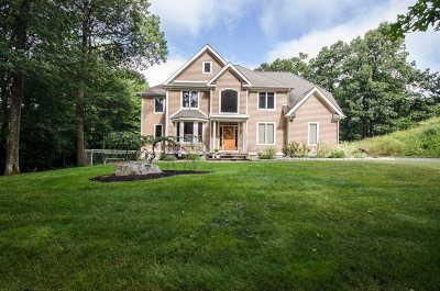 Dutchess County Single Family Home For Sale: 114 Bowe Ln