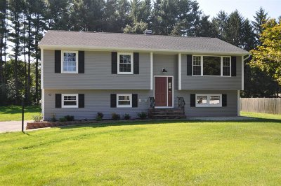 East Fishkill Single Family Home For Sale: 42 Brown