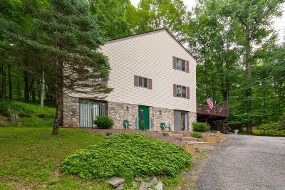 East Fishkill Single Family Home For Sale: 22 Laura Ln