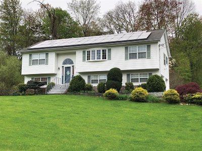 East Fishkill Single Family Home For Sale: 17 Verplanck Ave