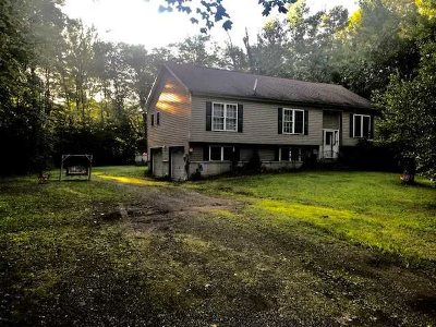 New Paltz Single Family Home For Sale: 237 South Ohioville Rd.