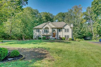 Poughkeepsie Twp Single Family Home For Sale: 31 Kenzbrit Ct