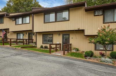 Beekman Condo/Townhouse For Sale: 1305 Chelsea Cove S #1305